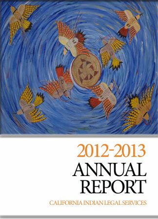 cils2013cover
