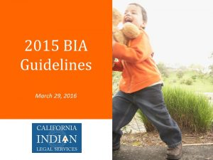 2015 BIA Guidelines PPT 3.28.16